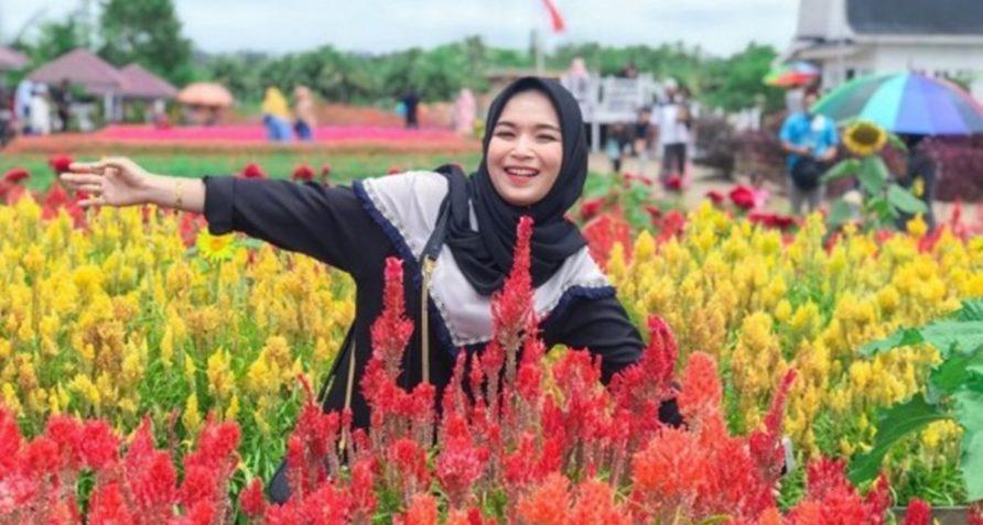 10 Potret Taman Bunga Celosia Instagramable di Aceh