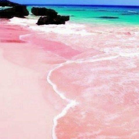 Inilah 5 Pantai dengan Warna Hamparan yang Unik di Dunia