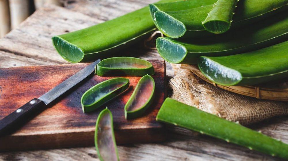 10 Cara Alami yang Cepat Mengatasi Jerawat Meradang ...